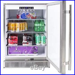 Blaze 24 Outdoor Rated Stainless Steel Refrigerator, 5.2 Cu Ft